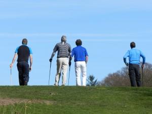Blue skies at Weston Park